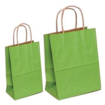 Large and Small Green Gift Bags by Three Designing Women