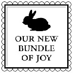 Bundle Mix and Match Stamp Design by Three Designing Women
